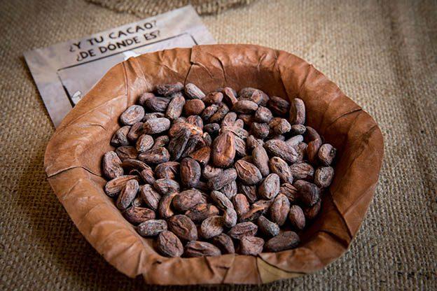cacao nibs ica