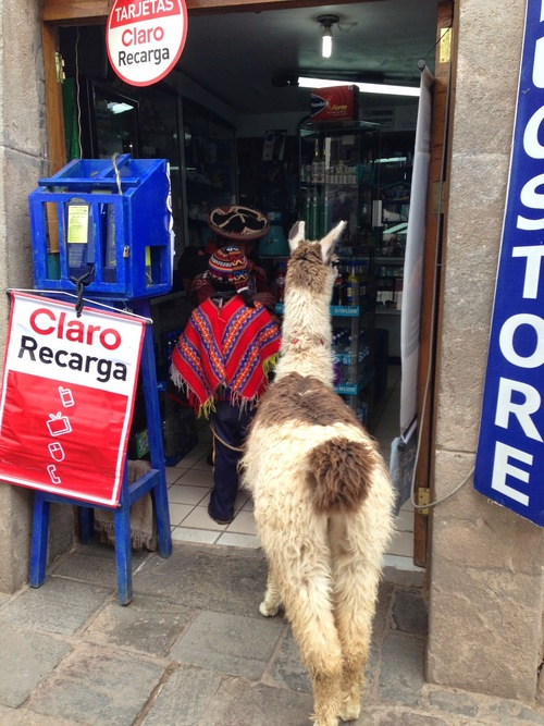 Travel Influencers Take on Cusco