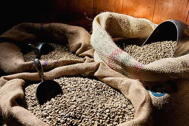 peru tourism coffee beans