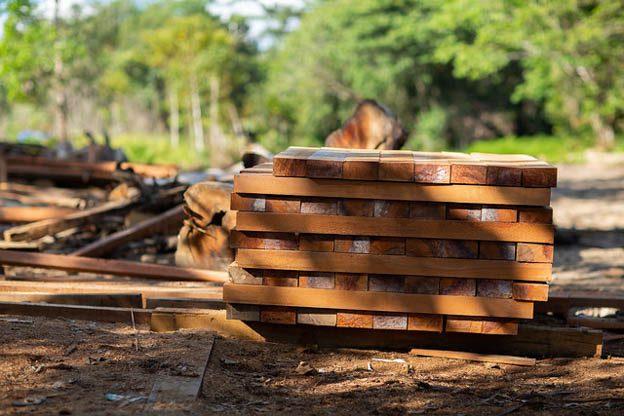 logging in peru