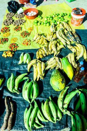 jungle food