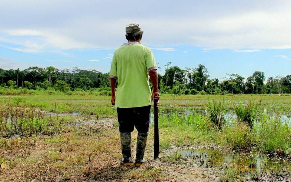 Evironmental-Defenders-Amazon