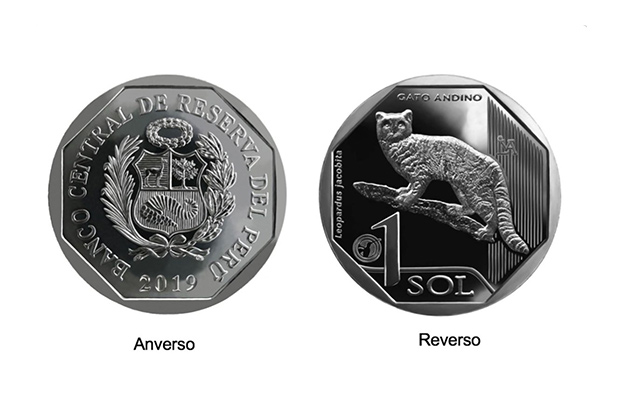 andean cat coin