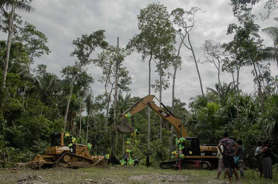 manu park logging