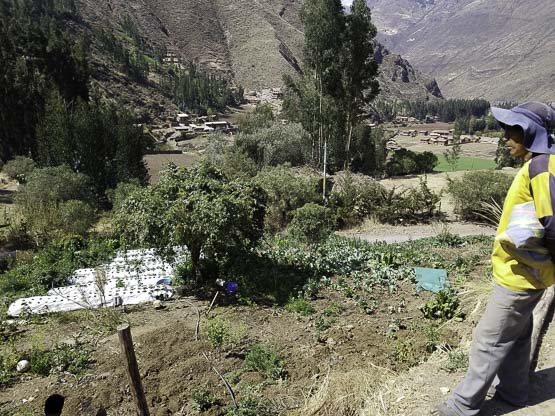canalpata sacred valley andes life