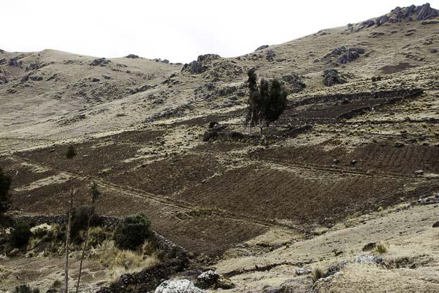 viacha-sacred-valley-pisac-8-1