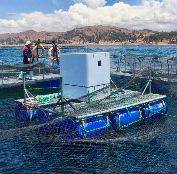 lake titicaca artificial intelligence feeders umnitron
