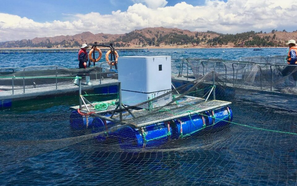 lake titicaca artificial intelligence feeders umnitron