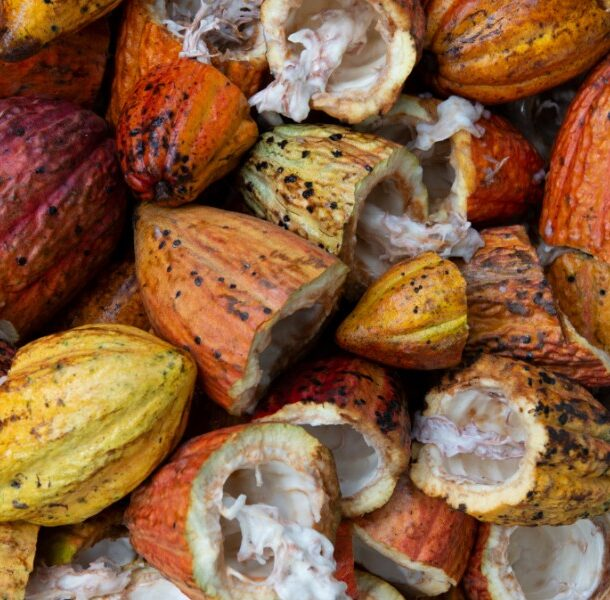 cacao health benefits peru