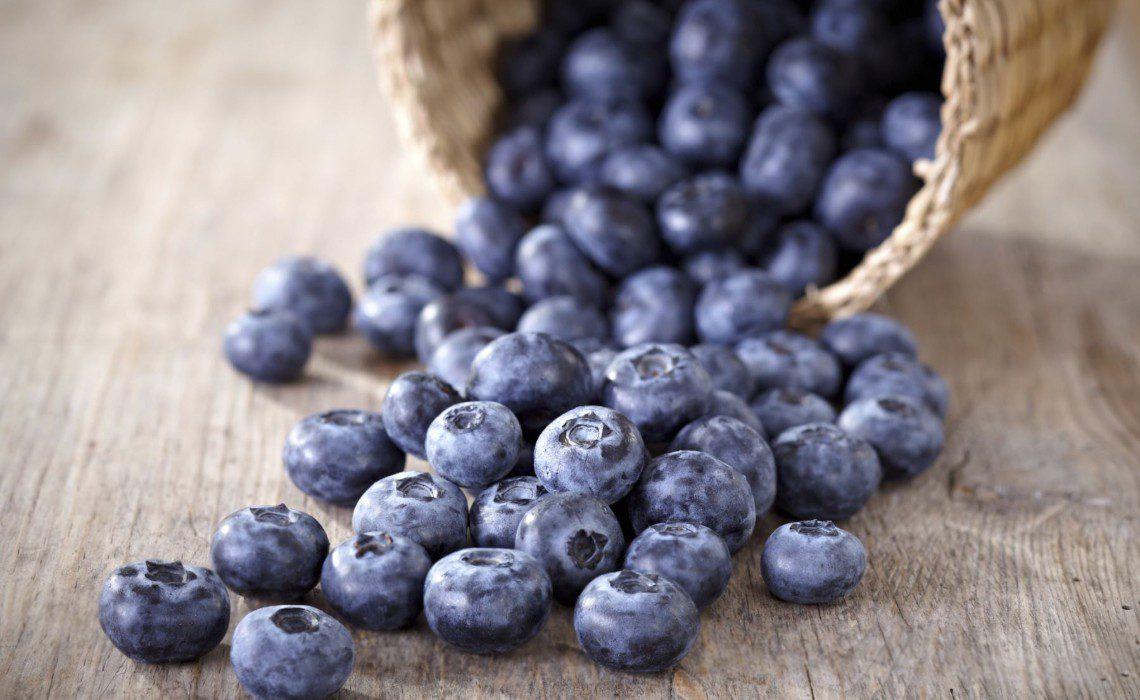 blueberries andina (1)
