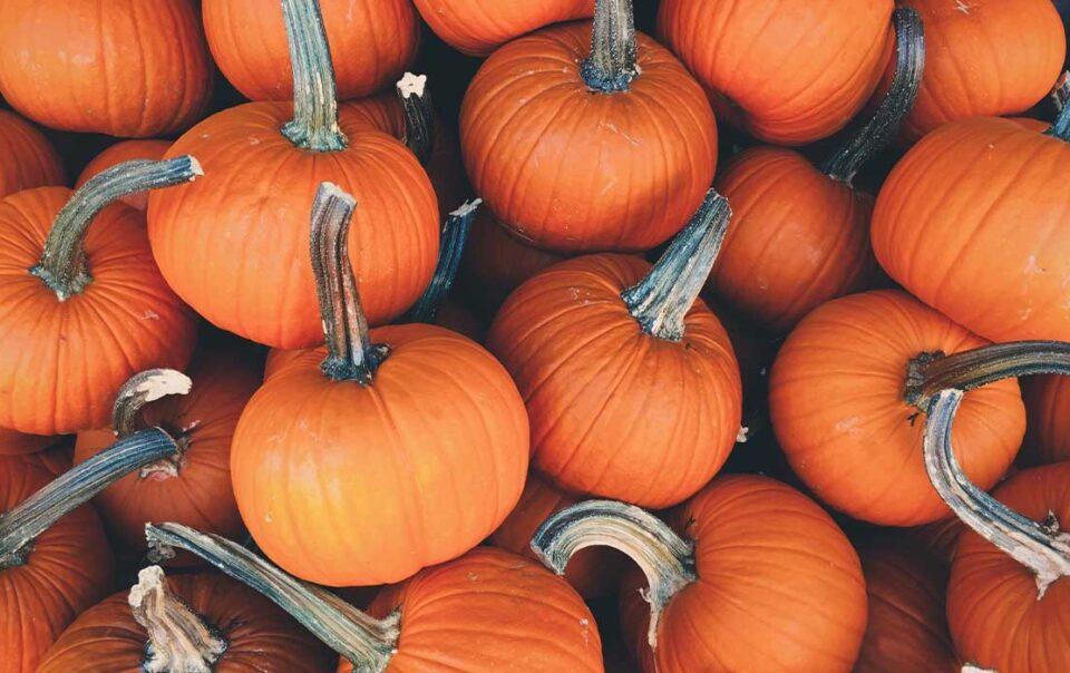 thanksgiving-in-peru