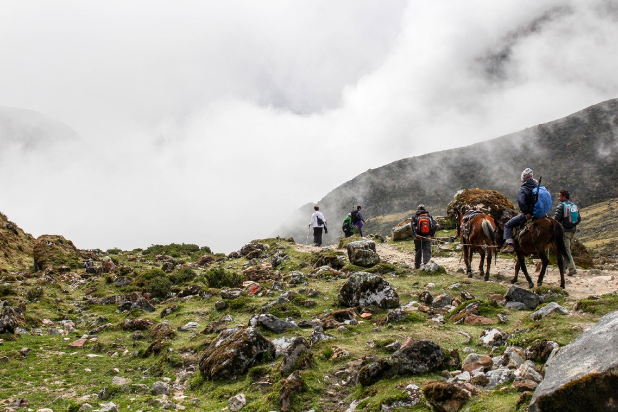 SALKANTAY-trek-horse