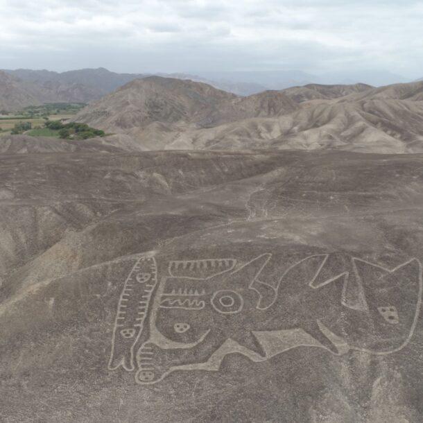 palpa geoglyphs orca