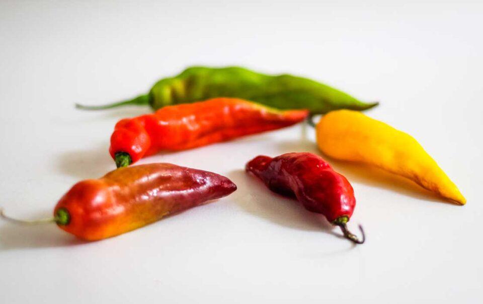 Peruvian-aji-peppers