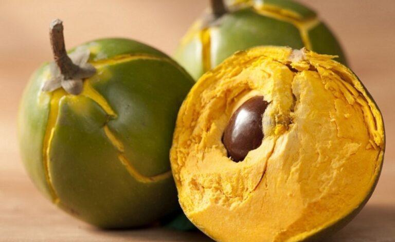 benefits of Lucuma Peruvian fruit