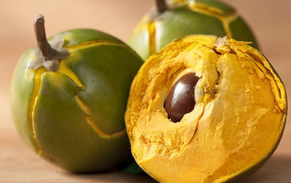 benefits of Lucuma Peruvian fruit