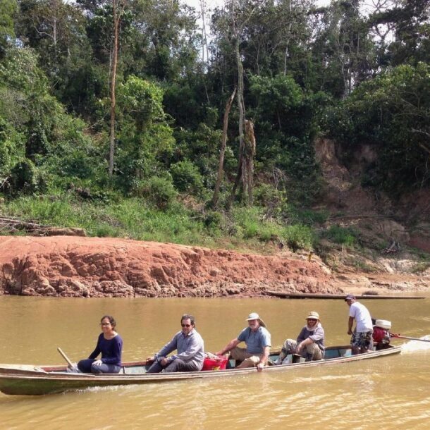 monkeys from africa to peru study