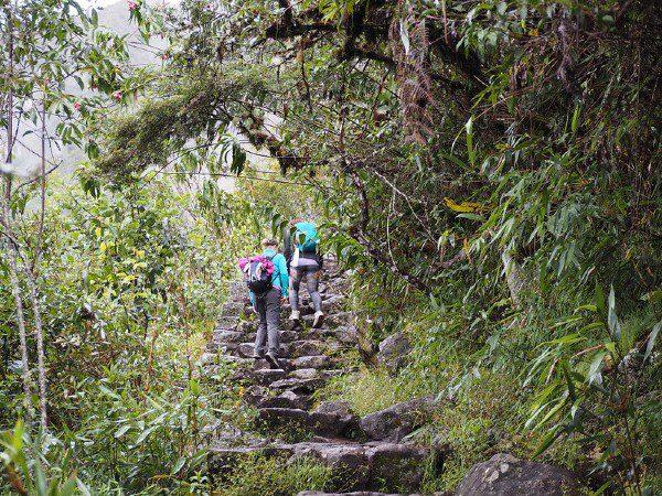Trek-to-Machu-Picchu