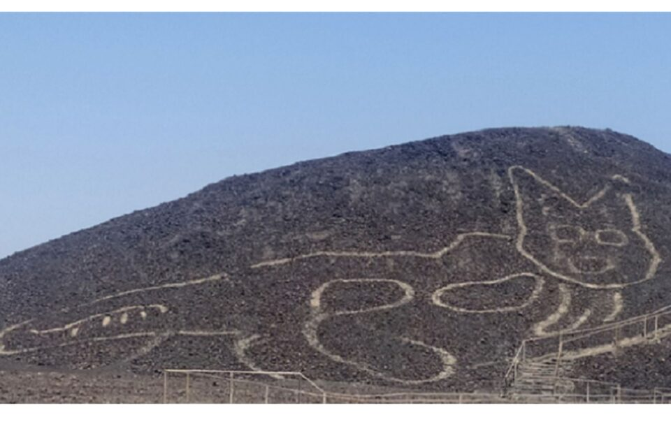 New Feline Nazca Lines